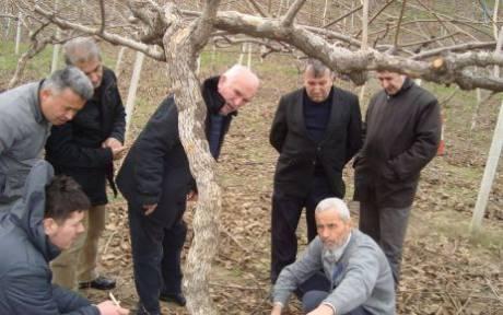 Çiftçilere kivi budama,seracılık ve ekoturizm eğitimi
